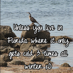Unless you live in Florida where it only gets cold 3 times all winter xD