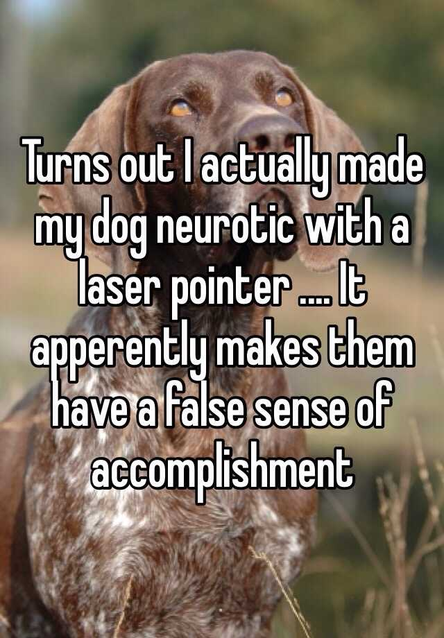 Turns out I actually made my dog neurotic with a laser pointer .... It apperently makes them have a false sense of accomplishment