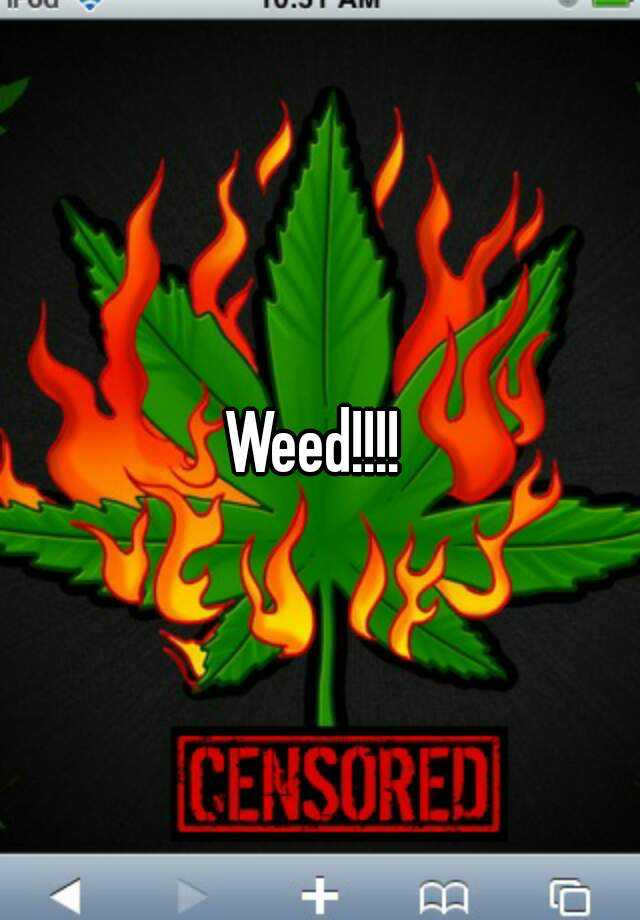 Weed!!!!