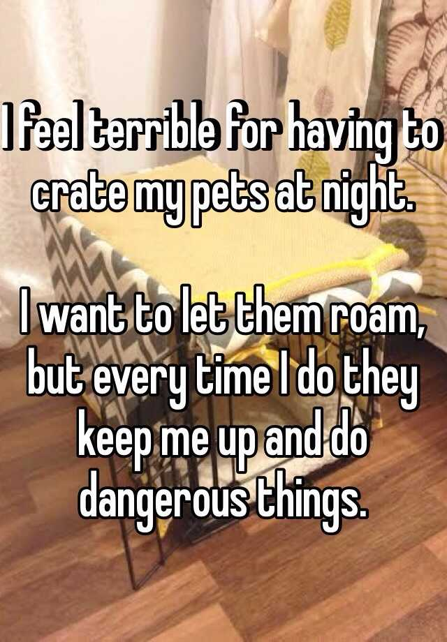 I feel terrible for having to crate my pets at night.   I want to let them roam, but every time I do they keep me up and do dangerous things.