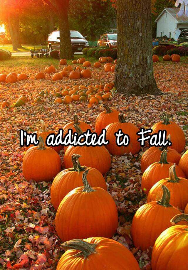 I'm addicted to Fall.