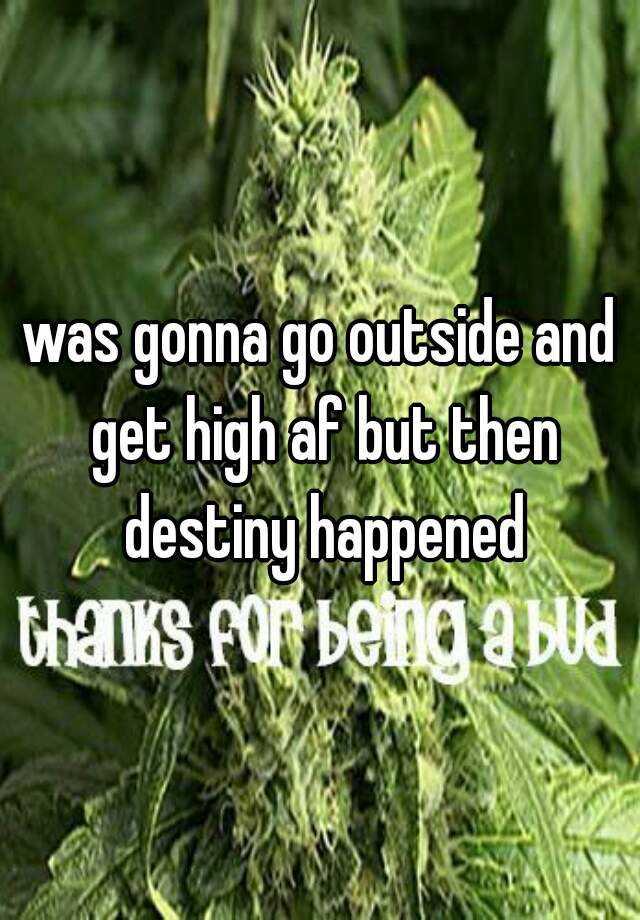 was gonna go outside and get high af but then destiny happened