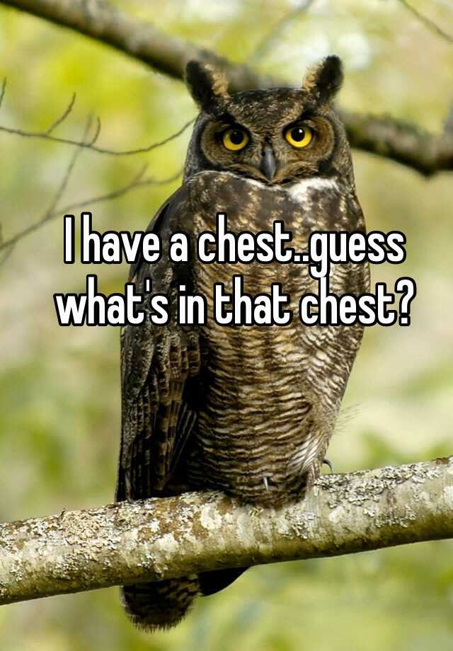 I have a chest..guess what's in that chest?