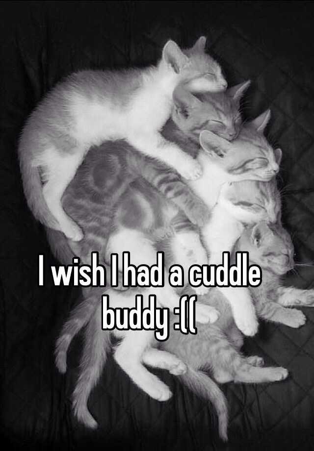 I wish I had a cuddle buddy :((