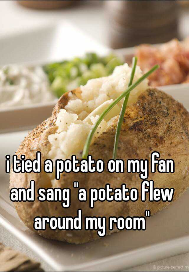 """i tied a potato on my fan and sang """"a potato flew around my room"""""""